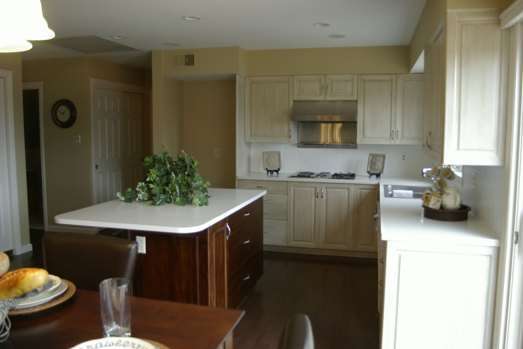 Inexpensive Kitchen Facelift 3